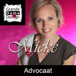 echtscheidings-advocaat